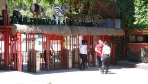 Antep Hayvanat Bahçesi urfalıların ilgi odağı