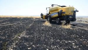 Şanlıurfa'da 50 dönümlük buğday ekili tarla yanarak kül oldu