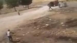 Şanlıurfa'da 2 kişinin öldüğü kavganın görüntüleri ortaya çıktı