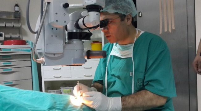 Prof.Dr.Mustafa Güzey vefat etti.